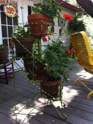 Garden (07)