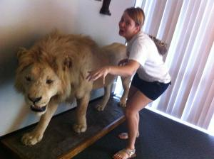Lion-Emily