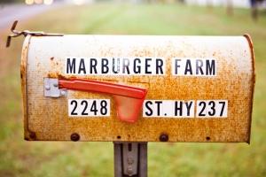Marburger (6) (1024x683)