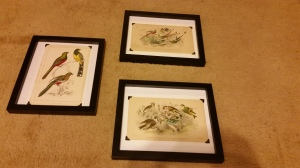 all 3 framed