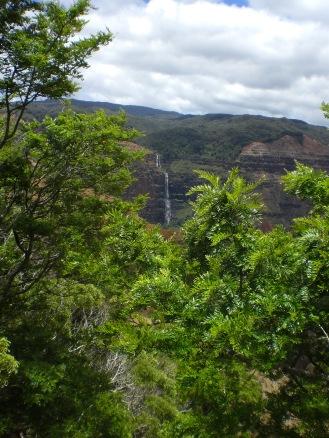 tAB - Kauai (11)