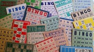 Bingo - Zoe Amaris